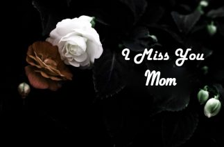 i miss you mom