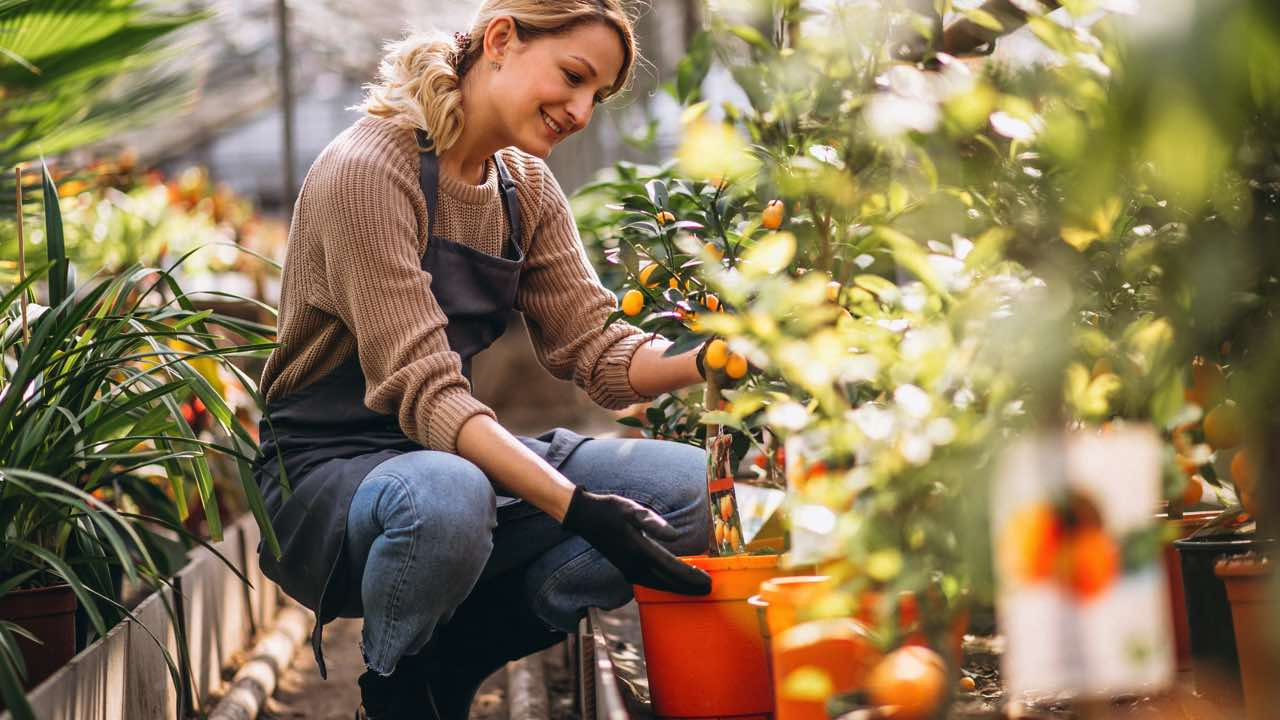 Hobbies For Women/Gardening